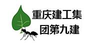 重庆建工集团第九建设工程有限公司